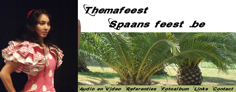 themafeest spaans feest